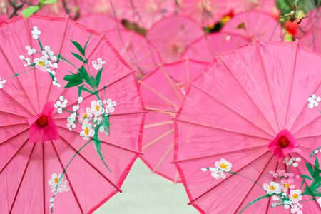 brolly: pink paper umbrellas hanging in park as decoration for spring festival Stock Photo