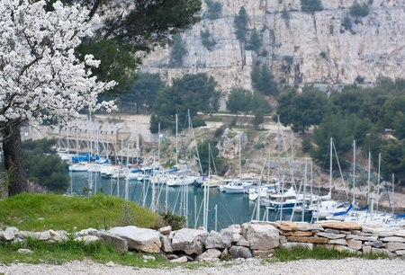 yacht boats in cassis Stock Photo - 9560350