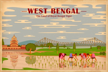 paddy: illustration depicting the culture of West Bengal, India Illustration