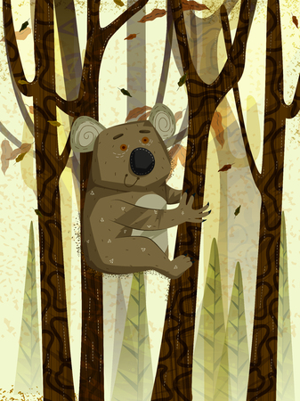animales de la selva: Wild animal Koala in jungle forest background