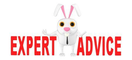 3d character , rabbit - expert advice - 3d rendering