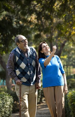 Happy senior couple admiring view at park