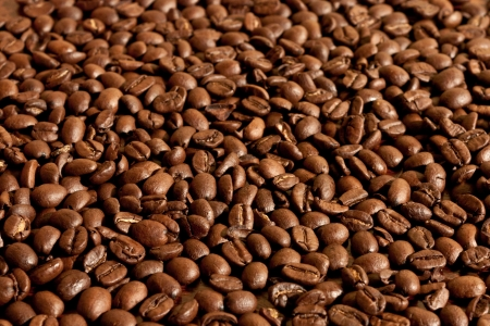 Close-up of a group of coffee beans Stock Photo - 13979373