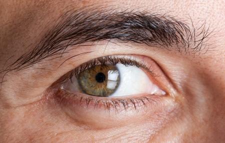 Macro shot of mans green eye photo