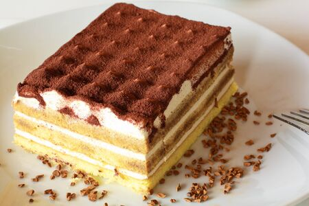 Cake with cream and chocolate, also called  tiramisu  in Italy photo