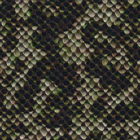 snake texture: Seamless texture of snake skin