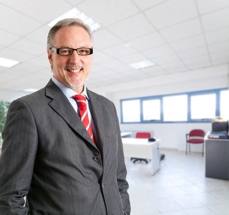 senior business: Portrait of a mature handsome businessman