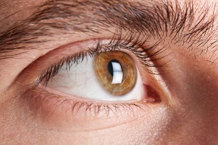 Macro shot of an eye photo