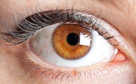 Brown eyes: Primer plano de los ojos de una mujer joven