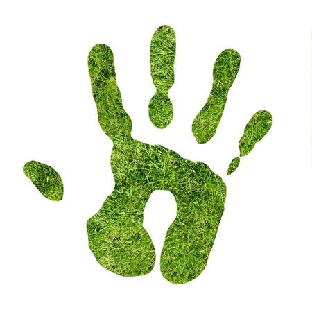 ecosistema: Huella de la mano verde de hierbas Foto de archivo
