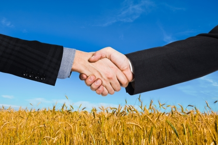 Businessmen shaking hands in front of a wheat field Stock Photo