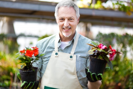 Portrait of a smiling greenhouse worker holding flower pots photo