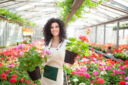 Beautiful woman holding flower pots photo