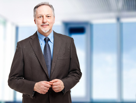 mature businessman: Smiling businessman  Stock Photo