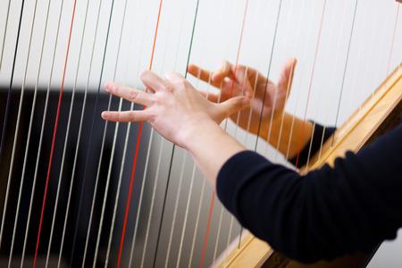 arpa: Mujeres manos tocando el arpa