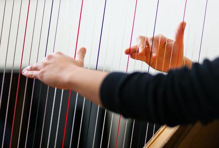 Female hands playing harp photo