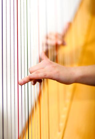 arpa: Manos de mujer tocando el arpa Foto de archivo