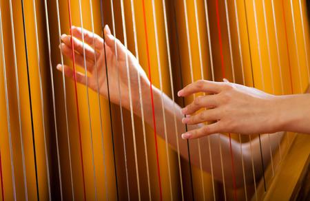 the harp: Manos de mujer tocando el arpa Foto de archivo