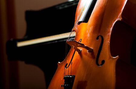 violoncello: Violoncello close up
