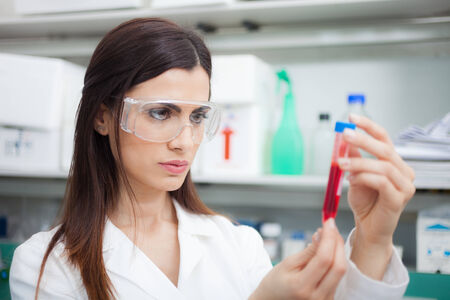 concentrating: Scientist examining a test-tube in a laboratory Stock Photo
