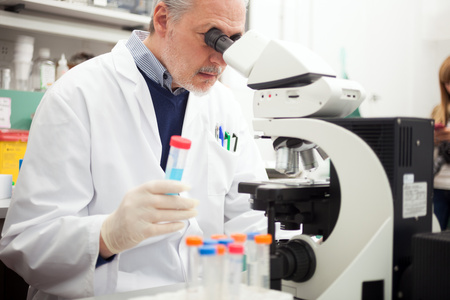 cancer research: Scientist at work in a laboratory