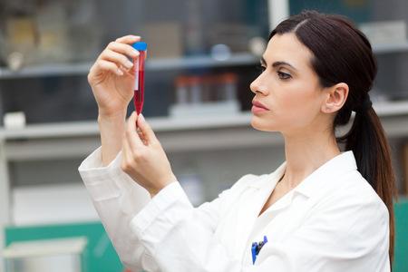 probeta: Mujeres científico mirando un tubo de ensayo