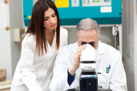 analytical chemistry: Scientists using a microscope in a laboratory Stock Photo
