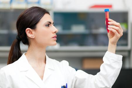 tubo de ensayo: Investigador de la mujer haciendo un an�lisis de sangre en un laboratorio