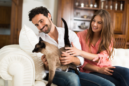 couple couch: Portrait of an happy couple playing with their cat on the couch. Shallow depth of field, focus on the man Stock Photo