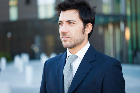 councilor: Portrait of an handsome businessman Stock Photo