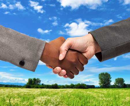 black hands: Business people shaking hands in front of a grass field