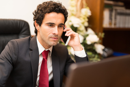 sales executive: Portrait of a businessman talking on the phone