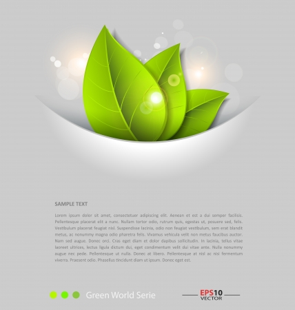 leaves vector: Design of a fresh leaves vector background template for text inclusion