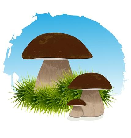 Mushrooms in grass under blue vector illustration
