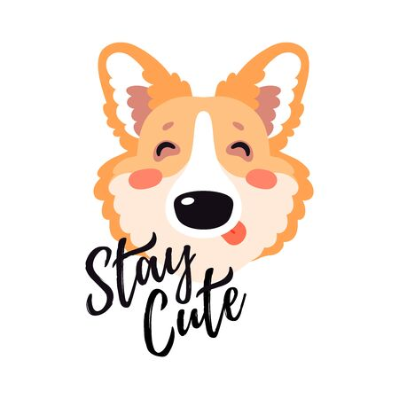 Illustration with happy Corgi dog, text Stay cute. Funny lettering childish design, kid background element for room birthday decor, baby shower invitation card, t-shirt print, positive emotions, badge
