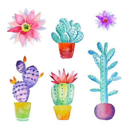 Cactus isolated on white background. Vector, watercolor hand drawn set illustration