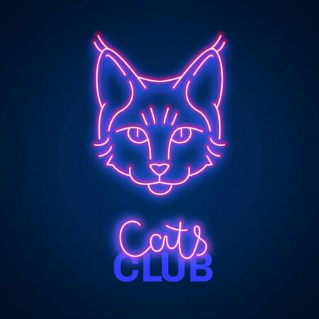 Glowing neon effect Cats club Maine coon sign