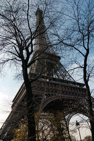Eiffel Tower, blue sky background, tree foreground
