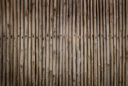 Texture of dry wood sticks knocked down with metal nails