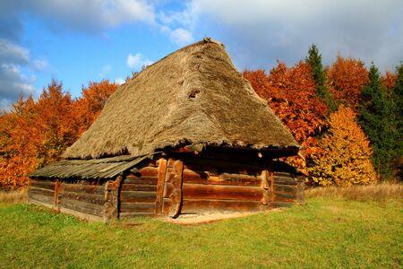 Autumn Landscape, beautiful vivid nature photo