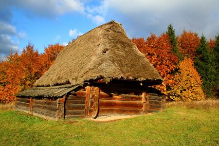 Autumn Landscape, beautiful vivid nature