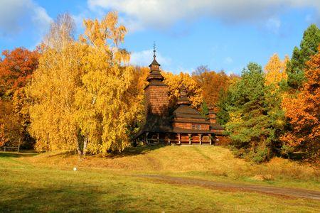 Paysage d'automne, la belle nature vivante