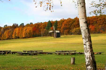Windmills on the meadow, autumn vivid landscape