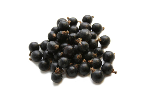 Black Currant Berry. Still life Stock Photo