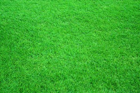 Football field. Green grass background, texture. Stock Photo