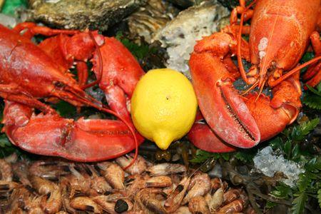 Fruits de mer d�licieux de langoustines