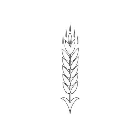 Minimalistic wheat line icon. Simple barley, weat, rice outline vector illustration. Linear Wheat isolated on white background. Farm and Bakery symbol