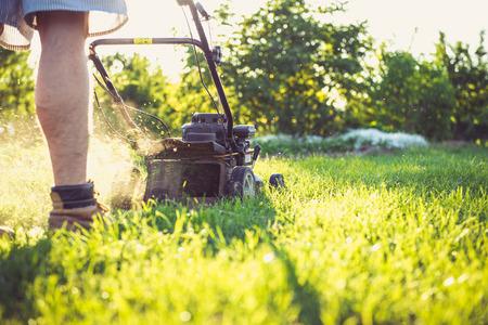 아름다운 저녁 동안 잔디를 깎고 젊은 남자의 사진.