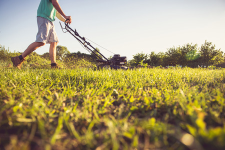 maintenance man: Photo of a young man mowing the grass during the beautiful evening.