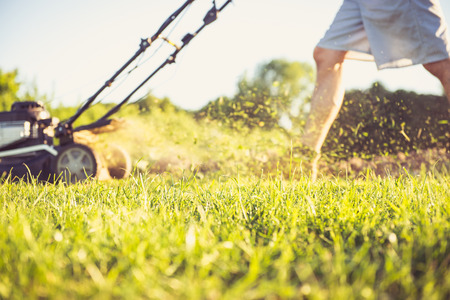 lawn mower: Photo of a young man mowing the grass during the beautiful evening.